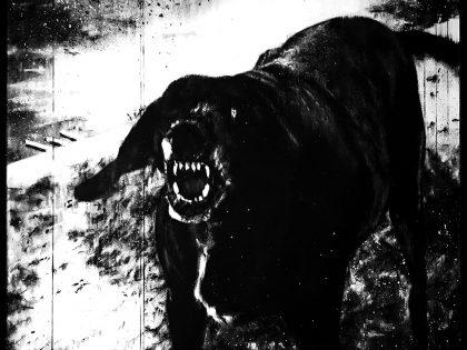 Quique Ortiz: Il cane lento (Franco Vaccari, I cani lenti -Slow dogs-, 1971), 2020. Mixta sobre panel. 65x81 cm.
