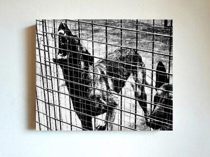 Quique Ortiz: Sin título, 2018. Tránsfer sobre panel. 22x27 cm.