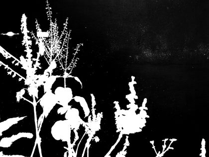 Quique Ortiz: Sin título, 2017. Óleo sobre lino, 50x50 cm.