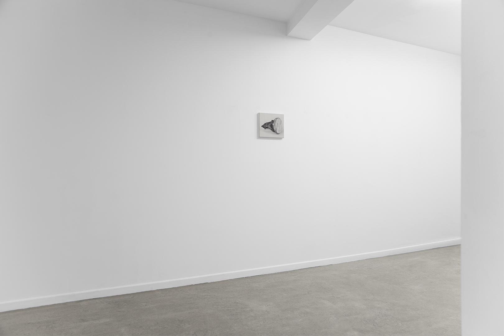Exposición TIERRA Y CEMENTO (Sentarse y Esperar), Alain Urrutia, Galería Juan Silió, 2016.