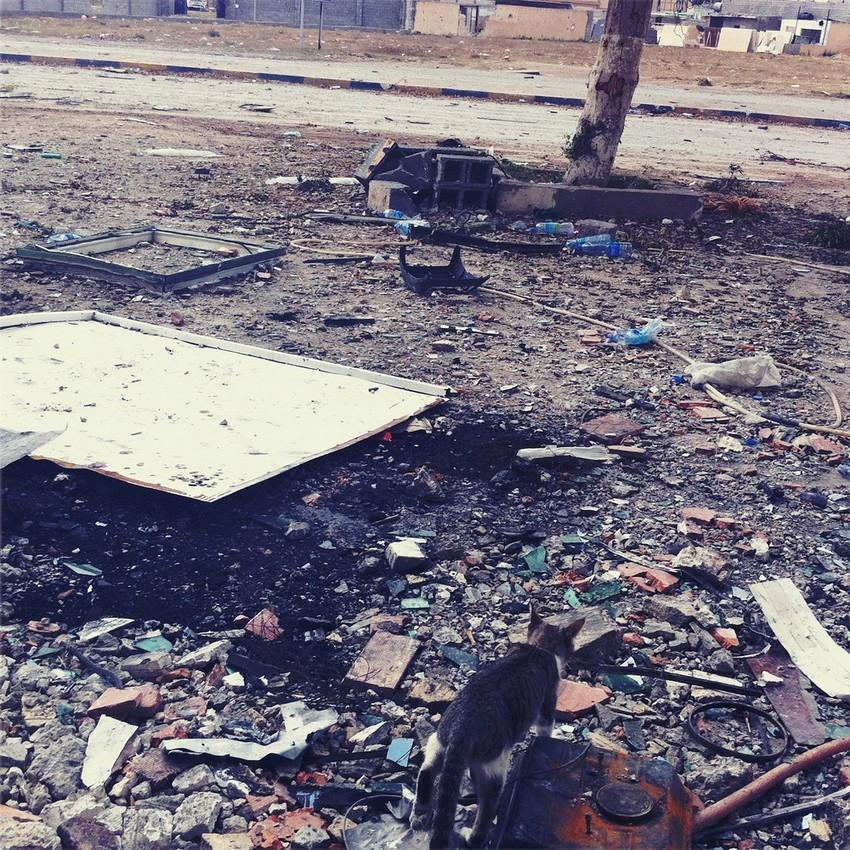 GUILLERMO CERVERA. Restos de batalla en el asedio de Misrata, Libia.
