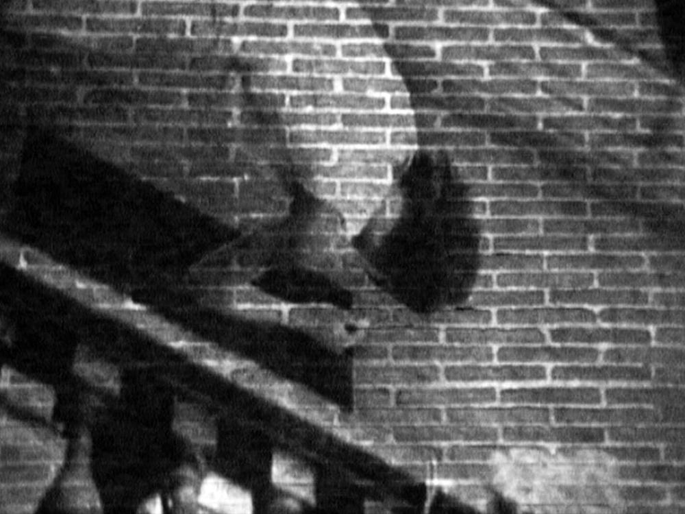 NOÉ SENDAS. Impulses&Hesitations (1997-98. Videoinstalación. B/N. 4´43´´,loop))