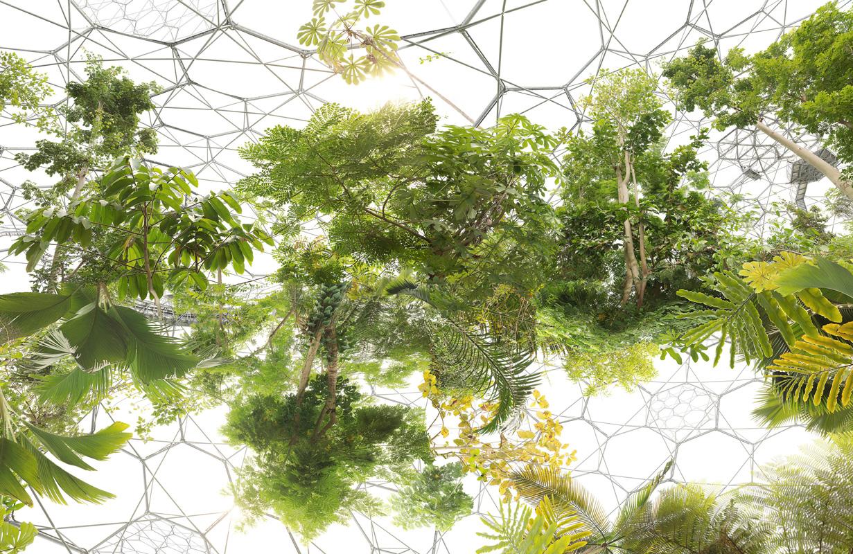 Michael Najjar. space garden