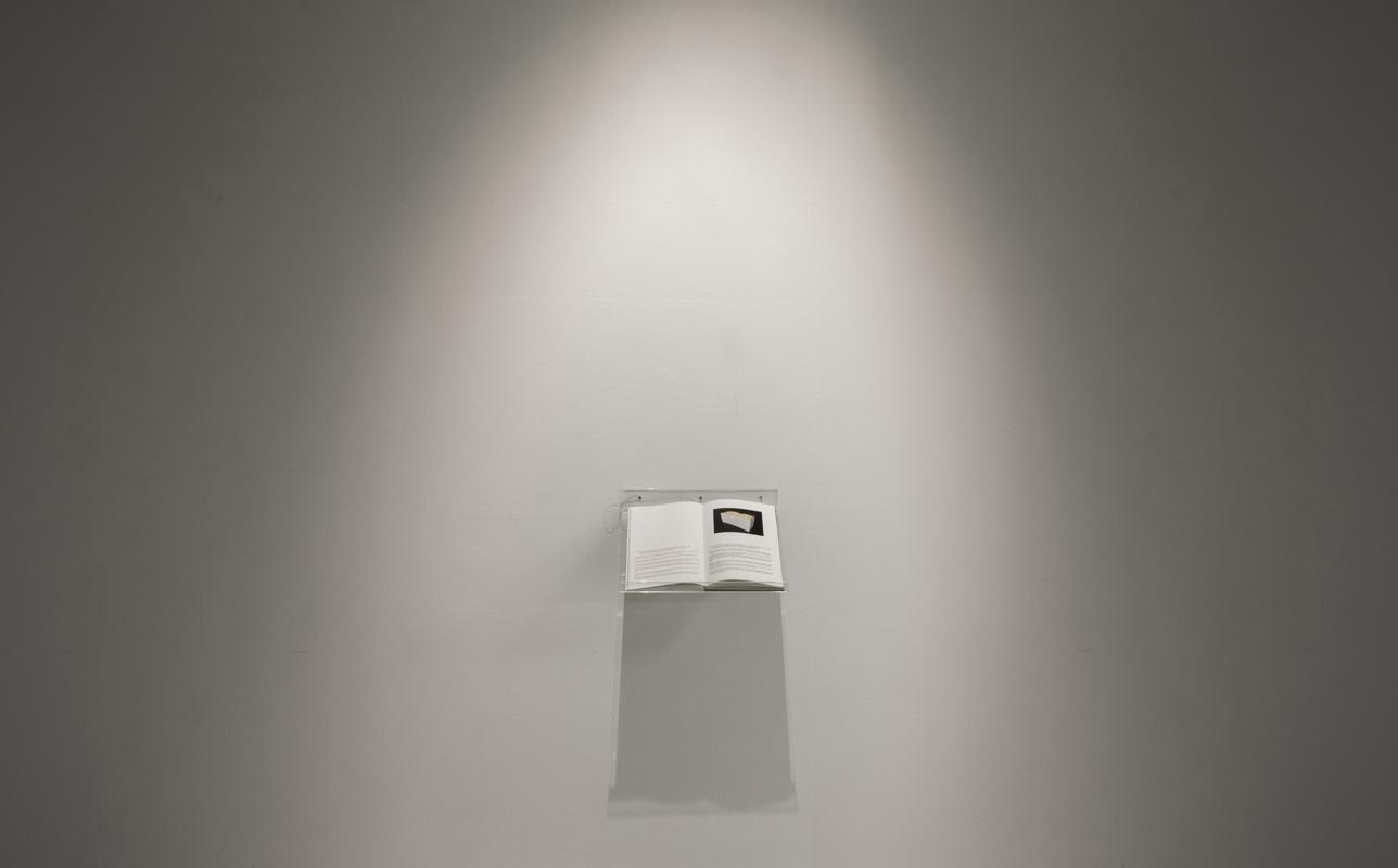 Rosell Meseguer. Libro de artista
